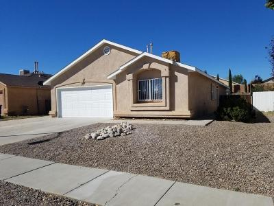 Albuquerque Single Family Home For Sale: 819 Tanager Drive SW