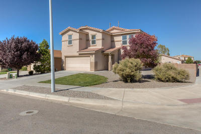 Rio Rancho Single Family Home For Sale: 1325 Maple Meadows Drive NE