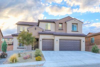 Rio Rancho Single Family Home For Sale: 37 Los Balcones Place NE