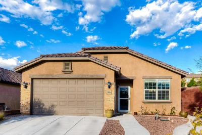 Rio Rancho Single Family Home For Sale: 300 Tierra Roja Place NE