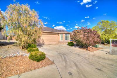 Albuquerque Single Family Home For Sale: 7819 Chaco Mesa Loop NW