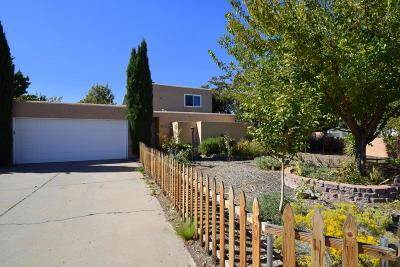 Albuquerque Single Family Home For Sale: 3909 Tulane Drive NE