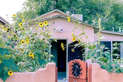 Albuquerque Single Family Home For Sale: 806 Stover Avenue SW