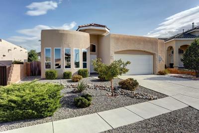 Albuquerque NM Single Family Home For Sale: $328,000
