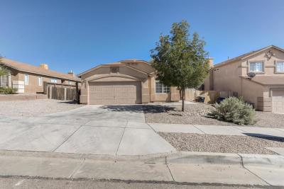 Albuquerque Single Family Home For Sale: 10608 Brookline Place NW