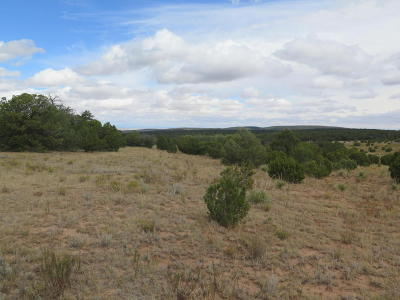 Bernalillo County Residential Lots & Land For Sale: 565 Juan Tomas Road