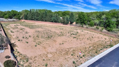 Bernalillo County Residential Lots & Land For Sale: 4801 Valle Rio Trail NW