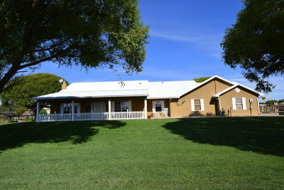 Valencia County Single Family Home For Sale: 81 Bloom N Shine Road