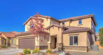Albuquerque Single Family Home For Sale: 9516 Andesite Drive NW