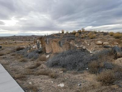Bernalillo County Residential Lots & Land For Sale: 6601 Petirrojo Road NW