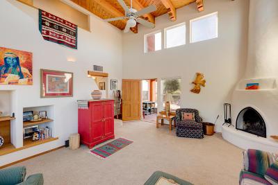 Placitas Single Family Home For Sale: 45 Tejon Canon Road