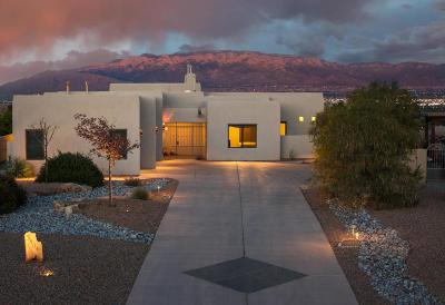 Albuquerque Single Family Home For Sale: 3904 Alamogordo Drive NW