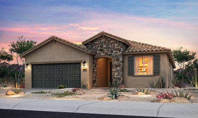 Albuquerque Single Family Home For Sale: 9516 Big Rock Drive NW