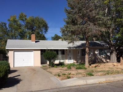 Albuquerque Single Family Home For Sale: 6105 Arvilla Avenue NE