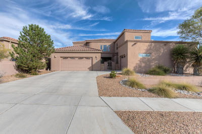 Albuquerque Single Family Home For Sale: 5209 Deer Meadow Trail NW