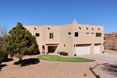 Placitas Single Family Home For Sale: 41 Dusty Trails Drive
