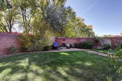 Albuquerque Single Family Home For Sale: 2700 Ornella Lane NW