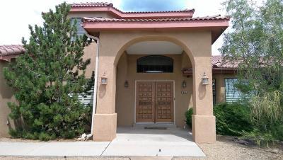 Albuquerque Single Family Home For Sale: 1604 Camino De La Sierra NE