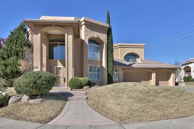 Albuquerque Single Family Home For Sale: 7025 Starshine Street NE