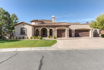 Albuquerque Single Family Home For Sale: 8801 Lavender Lace Court NE
