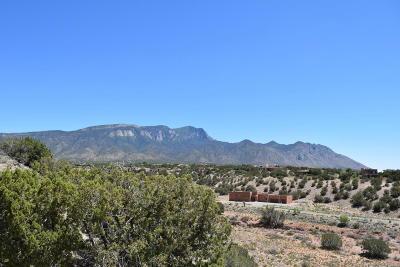 Placitas Residential Lots & Land For Sale: 46 Anasazi Trails Loop