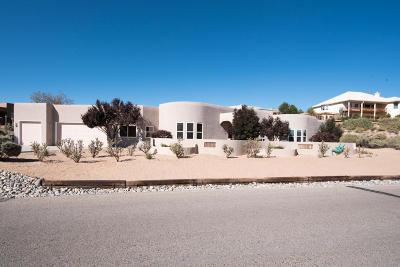 Rio Rancho Single Family Home For Sale: 709 Gray Hawk Drive NE