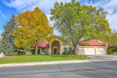 Albuquerque Single Family Home For Sale: 11005 Country Club NE