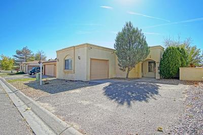 Albuquerque, Rio Rancho Single Family Home For Sale: 1659 Tramview Lane NE