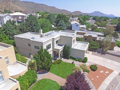 Albuquerque Single Family Home For Sale: 14326 Marquette Drive NE