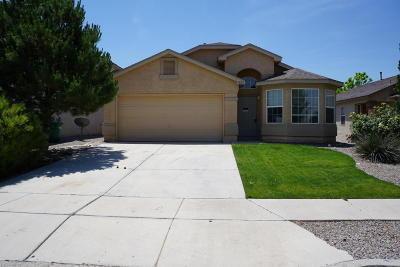 Albuquerque, Rio Rancho Single Family Home For Sale: 1024 High Plains Road NE