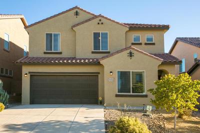 Albuquerque, Rio Rancho Single Family Home For Sale: 3132 Llano Vista Loop NE