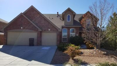 Albuquerque, Rio Rancho Single Family Home For Sale: 1925 Paseo De La Villa SE