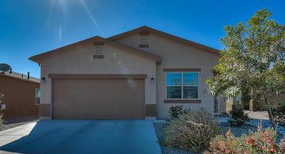 Albuquerque, Rio Rancho Single Family Home For Sale: 1415 Blue Sky Loop NE