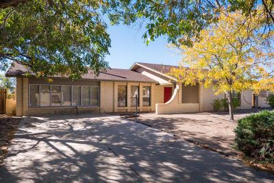 Albuquerque, Rio Rancho Single Family Home For Sale: 2006 Spruce Needle Road SE