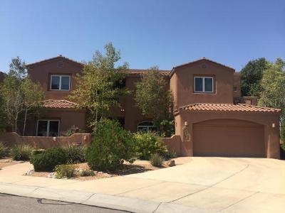 Albuquerque Single Family Home For Sale: 7409 Blue Holly Court NE