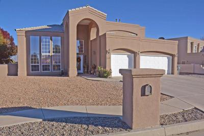 Rio Rancho Single Family Home For Sale: 3917 Bay Hill Loop SE