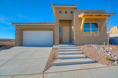 Rio Rancho Single Family Home For Sale: 5978 Redondo Sierra Vista NE