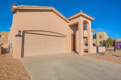 Albuquerque, Rio Rancho Single Family Home For Sale: 6121 Santa Fe Trail Drive NE