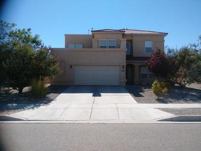 Rio Rancho Single Family Home For Sale: 2053 Platina Road SE