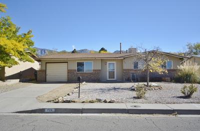 Albuquerque Single Family Home For Sale: 704 Monell Drive NE