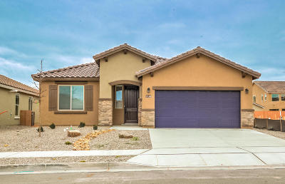 Albuquerque, Rio Rancho Single Family Home For Sale: 7110 Overview Road NE