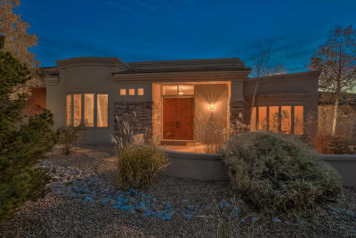 Albuquerque Single Family Home For Sale: 13001 Desert Moon Place NE
