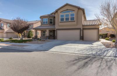Albuquerque Single Family Home For Sale: 8508 Wild Dunes Avenue NW