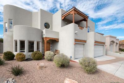 Albuquerque Single Family Home For Sale: 7432 Anton Circle NE
