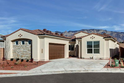 Albuquerque Single Family Home For Sale: 9116 North Star Lane NE