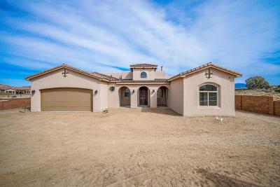Albuquerque Single Family Home For Sale: 8020 Canoncito Drive NW