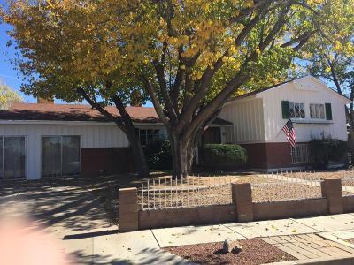 Albuquerque Single Family Home For Sale: 3400 Dellwood Court NE
