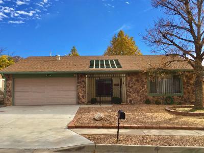 Albuquerque Single Family Home For Sale: 712 Paseo Del Mar NE