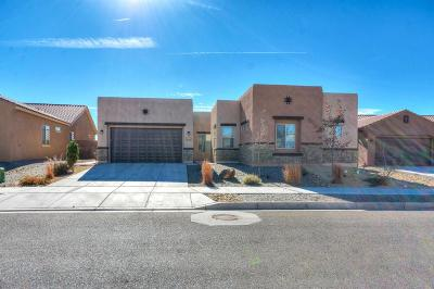 Albuquerque, Rio Rancho Single Family Home For Sale: 4019 Plaza Colina Lane NE