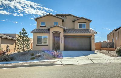 Rio Rancho Single Family Home For Sale: 7039 Wrangell Loop NE
